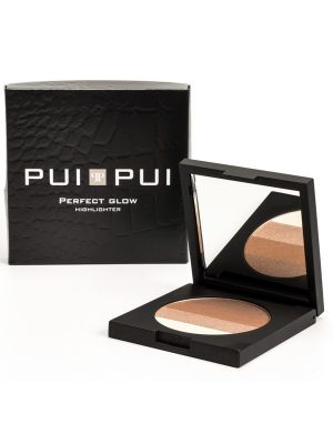 Perfect Glow Highlighter - 9 gram 4 in 1 met spiegel